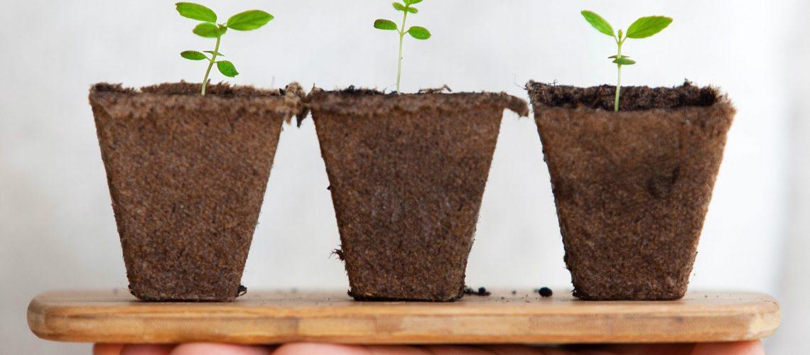 המפתח לצמיחה עסקית הוא לזרוע ולקצור. אנחנו זורעים כל כך הרבה בעסק שלנו, ובדיוק כמו בטבע לא כל זרע יניב תוצאה. ככל שתזרעו יותר תקצרו יותר.